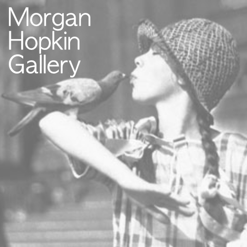 morgan hopkin gallery logo which links to more information
